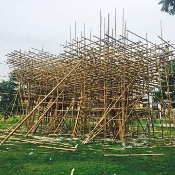 'Treeplets' under construction.